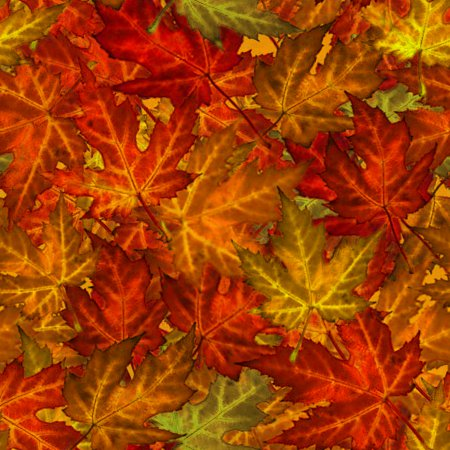 Click to get the codes for this image. Autumn Maple Leaves Background Tiled, Autumn or Fall Background Wallpaper Image or texture free for any profile, webpage, phone, or desktop