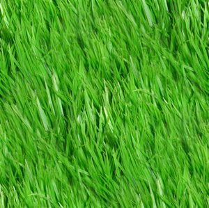 Click to get the codes for this image. Grass Seamless Pattern, Green, Plants Background Wallpaper Image or texture free for any profile, webpage, phone, or desktop
