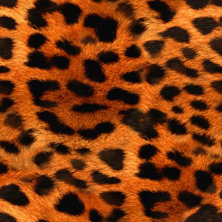 Click to get the codes for this image. Orange Leopard Fur Seamless Background Pattern, Fur and Animal Print, Orange Background Wallpaper Image or texture free for any profile, webpage, phone, or desktop