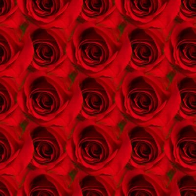 Click to get the codes for this image. Red Roses, Red, Flowers Background Wallpaper Image or texture free for any profile, webpage, phone, or desktop