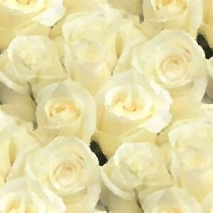 Click to get the codes for this image. White Roses Seamless Painting, Flowers, Artistic, White, Ivory or Cream Colored Background Wallpaper Image or texture free for any profile, webpage, phone, or desktop