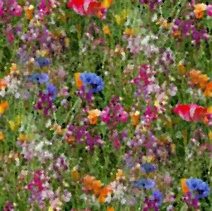 Wildflower Painting Seamless Pattern Background Or